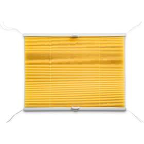 BASIC Plissee 372103900000 Grösse B: 100.0 cm x H: 160.0 cm Farbe Gelb Bild Nr. 1