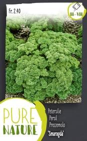 Prezzemolo 'Smaragda' 5g Sementi di erbe Do it + Garden 287121300000 N. figura 1