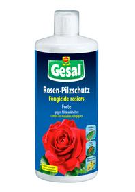 Rosen-Pilzschutz Forte, 250 ml Pilzkrankheiten Compo Gesal 658506500000 Bild Nr. 1