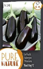 Aubergine 'Black King F1' hâtive 50k Semences de legumes Do it + Garden 287119100000 Photo no. 1