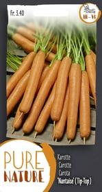 Karotte 'Nantaise'(Tip-Top), 1 Saatband Sementi di verdura Do it + Garden 287107100000 N. figura 1