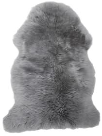 Lammfell borregos silbergrau 80x85 cm Sitzauflage 620524100000 Bild Nr. 1