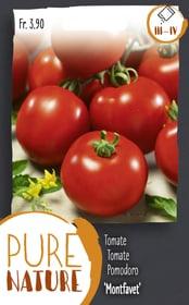 Pomodori 'Montfavet', precoce 30 Korn Sementi di verdura Do it + Garden 287118200000 N. figura 1