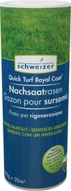 Quick - Turf Royal Coat gazon pour sursemis, 0.5 kg