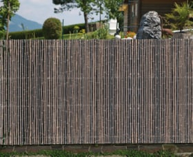 Sichtschutzmatte Ontake Windhager 631254300000 Bild Nr. 1