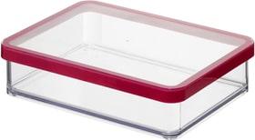 LOFT rechteckige Vorratsdose 1l mit Deckel und Dichtung, Kunststoff (SAN) BPA-frei, transparent/rot Küche Rotho 604061900000 Bild Nr. 1
