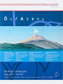 Hahnemühle Öl-&Acrylmalblock Pebeo 663554500000 Bild Nr. 1