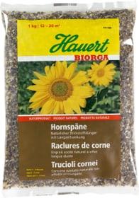 Biorga Raclures corne, 1 kg