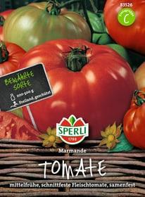 Tomate Marmande Gemüsesamen Sperli 650153800000 Bild Nr. 1