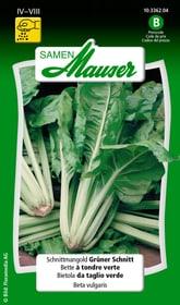Bietola da taglio verde Sementi di verdura Samen Mauser 650114902000 Contenuto 10 g (ca. 300 piante o 10 m²) N. figura 1