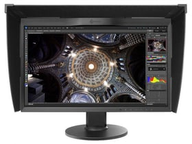 "ColorEdge CG248-4K 23.8"" Schermo EIZO 785300124077 N. figura 1"