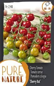 Cherry-Tomate 'Cherry Rot' 0.1g Gemüsesamen Do it + Garden 287118100000 Bild Nr. 1