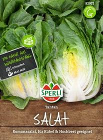 Salat Tantan Romana Sementi di verdura Sperli 650155200000 N. figura 1