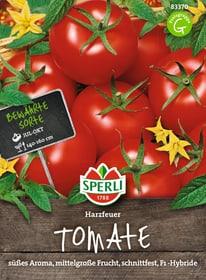 Tomaten Harzfeuer Sementi di verdura Sperli 650153400000 N. figura 1