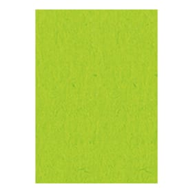 Carton à Photo 50X70 cm, vert clair