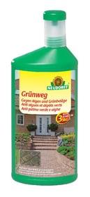 Grünweg Anti algues et dépôts verts, 1 L Mauvaises herbes Neudorff 658511900000 Photo no. 1