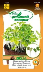 BIO-Micro-risciò Mizuna verde Sementi di gourmet Samen Mauser 650161000000 N. figura 1