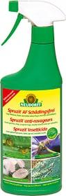 Spruzit AF Schädlingsfrei, 500 ml