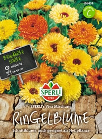 Ringelblume Sperli´s Viva Mischung Semences de fleurs Sperli 650176500000 Photo no. 1