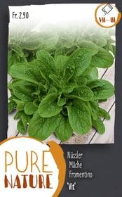 Formentino 'Vit' 5g Sementi di verdura Do it + Garden 287112500000 N. figura 1
