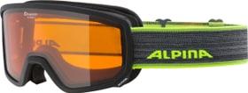 SCARABEO S DH Goggles Alpina 494998800189 Grösse onesize Farbe rauch Bild-Nr. 1