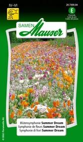 Symphonie de fleurs Summer Dream Semences de fleurs Samen Mauser 650101602000 Contenu 5 g (env. 3 m²) Photo no. 1