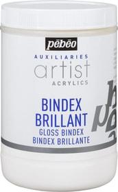 PÉBÉO Auxiliaries Artist Acrylics Bindex Brilliant 1L Pebeo 663510600000 Bild Nr. 1