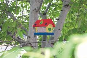Woodpecker Vogelfutterhäuschen Windhager 631309500000 Bild Nr. 1