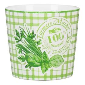 Farmer Herbs Pot Scheurich 657049800001 Taille ø: 14.0 cm Couleur Vert Photo no. 1