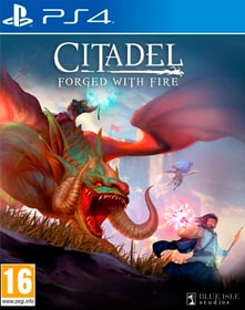 PS4 - Citadel : Forged with Fire D Box 785300146885 Bild Nr. 1