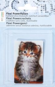 Flexi Powerhaken Kätzchen Do it + Garden 675113700000 Sujet Kätzchen Farbe Bunt Bild Nr. 1