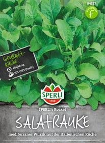 Senfrauke Rocket Sementi di verdura Sperli 650154400000 N. figura 1