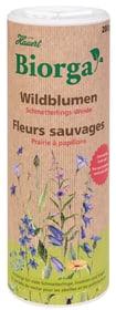 Biorga Wildblumen Schmetterlingsweide Blumensamen Hauert 658244800000 Bild Nr. 1