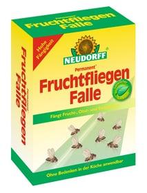 Permanent FruchtfliegenFalle