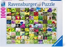 Puzzle Herbes 1000 748988600000 Photo no. 1