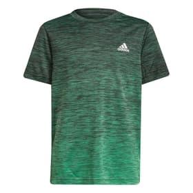 AEROREADY Gradient T-Shirt Fitnessshirt Adidas 466868215260 Grösse 152 Farbe Grün Bild-Nr. 1