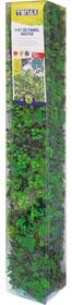 Synthetische Hecke DIVY 3D PANEL SALTUS 631382400000 Bild Nr. 1