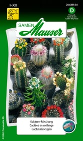 Kakteen Mischung Blumensamen Samen Mauser 650104401000 Inhalt 0.25 g (ca. 40 Pflanzen) Bild Nr. 1