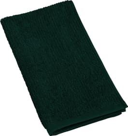EVITA Asciugamano per ospiti 450861120263 Colore Verde Dimensioni L: 30.0 cm x A: 50.0 cm N. figura 1