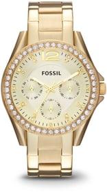 Holiday Riley ES3203 Armbanduhr Fossil 785300149779 Bild Nr. 1