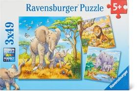 Géants sauvages Puzzle Ravensburger 748976700000 Photo no. 1