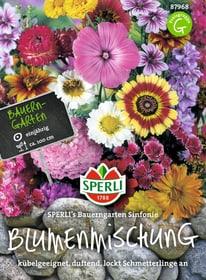 Einjährige Blumenmischung Bauerngarten Sinfonie Sementi di fiori Sperli 650177800000 N. figura 1