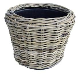 Cestino coprivaso Dry Pot 659649900000 Colore Grigio Taglio ø: 36.0 cm x A: 28.0 cm N. figura 1