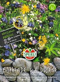 Blühende Waldwiese Sementi di fiori Sperli 650176800000 N. figura 1