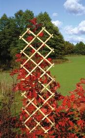 Scherengitter Do it + Garden 647060600000 Farbe Natur Grösse B: 50.0 cm x T: 2.0 cm x H: 180.0 cm Bild Nr. 1
