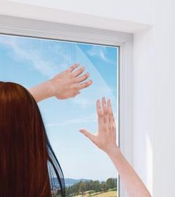 Fenster RHINO Protezione contro gli insetti Windhager 631297300000 N. figura 1