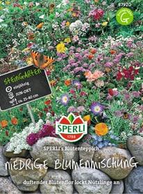 Niedrige Blumenmischung Sperli´s Blütenteppich Sementi di fiori Sperli 650177300000 N. figura 1