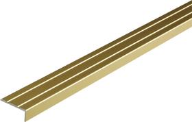 Abschluss-Profil 25 x 8 mm messingfarben 1m alfer 605118000000 Bild Nr. 1
