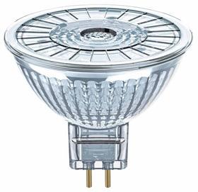 LED GU5,3 4.6W