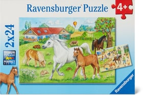 Au centre équestre Puzzle Puzzles Ravensburger 748975700000 Photo no. 1